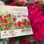 Em São José do Rio Preto, as mamães já foram homenageadas!